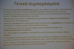 DSC_0159 (Copy)
