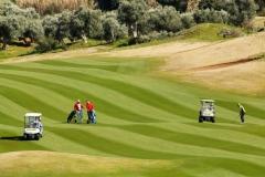 15_navarino golf